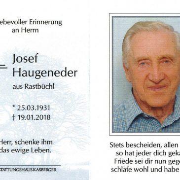 Sepp Haugeneder
